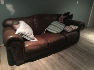 Natuzzi brown leather couch