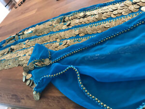 Belly Dancing Skirt with Coins