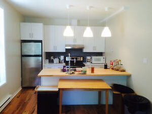 4 bedrooms Outremont Completely renovated