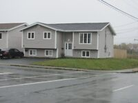 Bright Spacious Renovated 3 Bedroom House For Rent