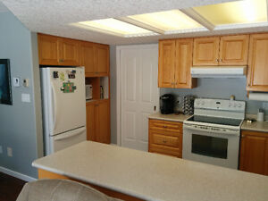Oak cabinets and countertops