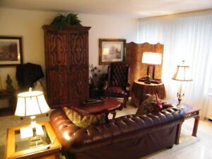 Executive Furnished Rentals - Short- or Long-Term - Spacious