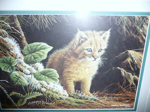 "Marc Barrie ""New World-Lynx Kitten"" Limited Edition, Signed and Stratford Kitchener Area image 2"