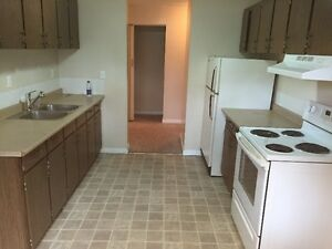 Large 3 Bedroom Apartment Near U of A and Whyte Ave!
