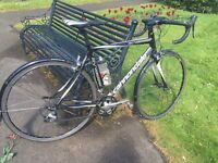 Cannondale synapse ultra 54cm with carbon forks