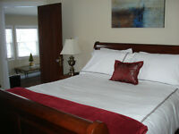 Executive Suites - Full Kitchens - In-suite Washer and Dryer