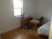 Large and bright Bedroom - Close to U of O & Byward Market- $500