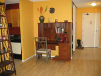 Downtown condo-1 BD Partially furnished- undergrd parking inc.