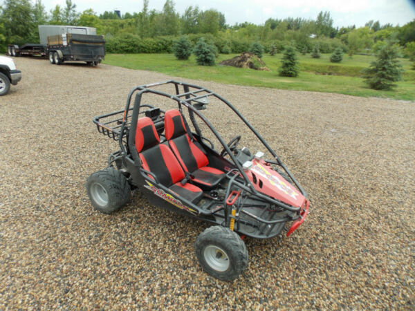 Used 2010 Other Quantum Go-Kart