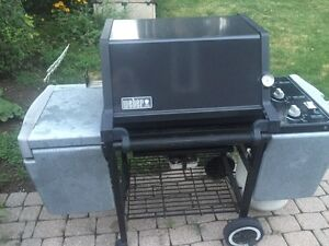 Weber BBQ Propane to Natural Gas Conversion Kit