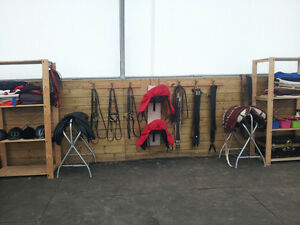 Awesome Riding Lessons Cornwall Ontario image 3
