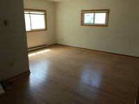 3 Bedroom, 2 Bathroom Downtown w/ Washer/Dryer & A/C!!!