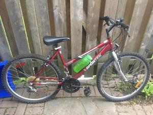 Bike (as is)