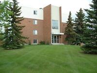 West End 2 Bedroom Condo 171 St & 86 Ave