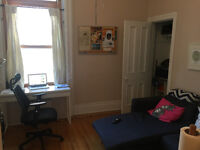 Great 1 Bedroom Apartment near McGill and Saint Laurent