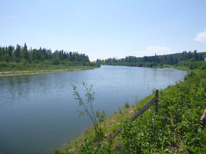 BEAUTIFUL VIEW WITH 130.5 ACRES BORDERING THE RED DEER RIVER