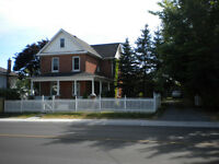 Beautiful 4+5 Bdr Houses Downtown ,Agents Welcome too!