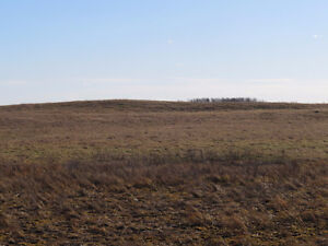 This is the ideal 47.17 acres to build your dream home on