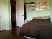 Summer Sublet May-August 1 room for rent in 3 bedroom house