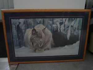 Robert Bateman framed print - the Dozing Lynx
