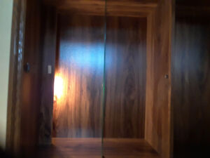 Cabinet with light