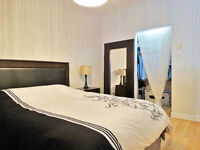 Large open plan one bedroom penthouse level unit in the Lofts