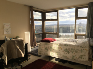 1 Bedroom Available for Sublet; May 1st - August 31st