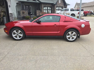 2008 Ford Mustang V6 Coupe (2 door)