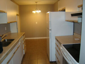LARGE 3 BEDROOM MAIN FLOOR IN EAST END Available Immediately