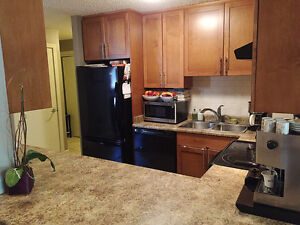 Beautiful 2 Bed/2 Bath Downtown Condo w/ UTILITIES INCLUDED!