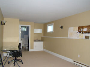 large room in private home -student rental or professional