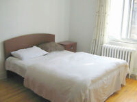 Nice furnished room,all incl,Girl roommate, metro vendome,July 1