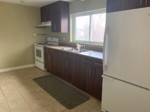MUST SEE: TWO LEVEL LOFT APARTMENT (1 bdrm)