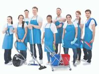 Home Cleaning Services / Free Quote