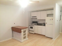 Beautiful Bachelor,Refurbished, Steps to Chinatown&Little Italy