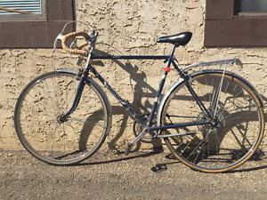 """Vintage Raleigh Commuter Hybrid Bicycle, 5 speed (size M, 21"""")"""