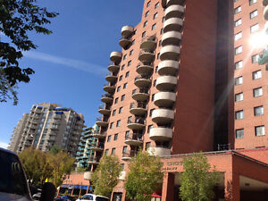 Fully Furnished 2 Bedroom Executive Condo In Eau Claire