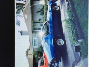1980 Chevrolet Camaro Coupe (2 door)