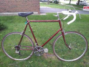 Raleigh Road Bike - Tall Frame