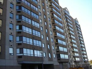 Newly Renovated 1 Bedrooms, Walking Distance to UOttawa!