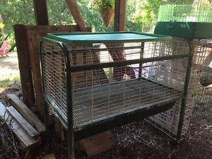 Free Pet Cages