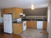 New 1 bedroom suite with 6 appliances and parking.