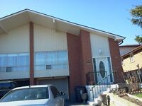 Finch/404 Near to Seneca College 4 bedrooms house for Rent