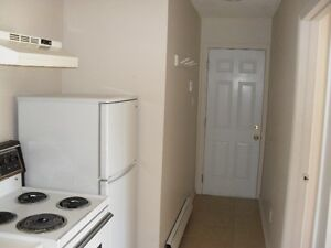 One Bedroom Apartment Available June1 - $750+