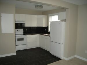 Newly renovated, one bedroom apartment available September. 1st
