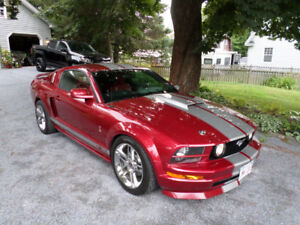 MUSTANG SHELBY CLONE
