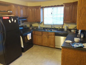 Bus to MUN and Village, clean and warm house, room for rent St. John's Newfoundland image 5