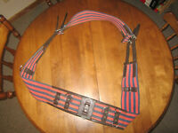 For Sale: Lunging Equipment