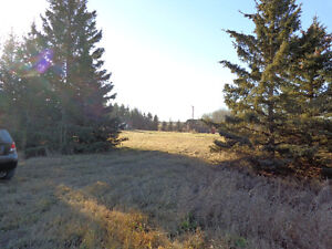 10 acre Acreage 3.5 NW of Yorkton for Sale