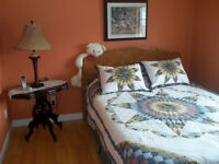Dieppe : Lovely fully furnished room... female only for rent